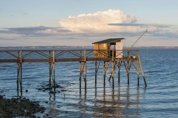Carrelet sur l'estuaire de la Gironde - © Vincent Bengold